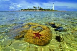Pulau-Beras-Basah