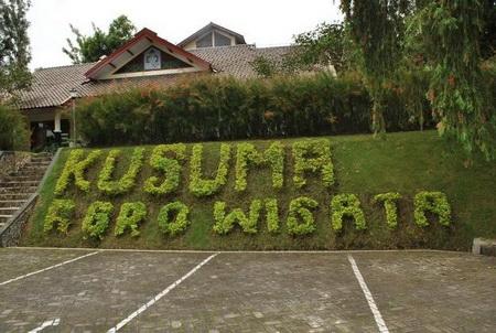 kusuma-aggrowisata